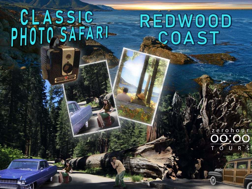 Blending images in photoshop project. The redwoods and ocean.