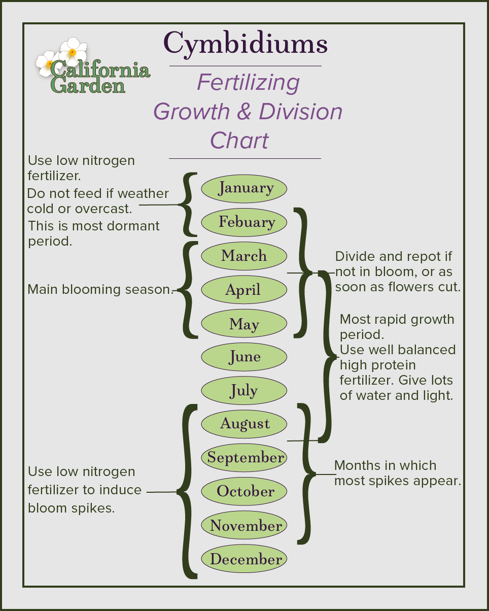 Garden infographic.